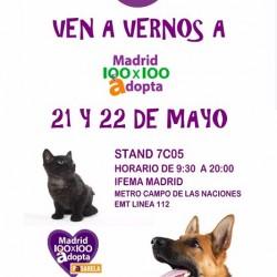 MADRID 100 X 100 ADOPTA