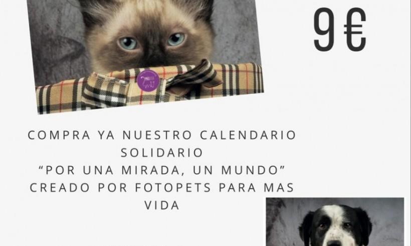 CALENDARIOS MAS VIDA 2019
